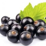 black-currants-nutrition-facts